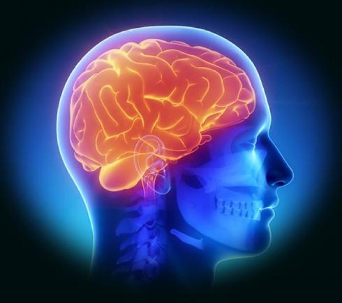 Tổng hợp những căn bệnh về não 1