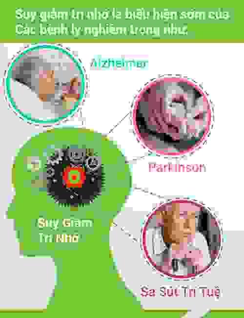 Điều trị suy giảm trí nhớ: Có dễ không? 1