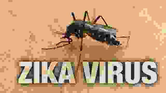 Virus Zika và bệnh teo não ở trẻ em có mối liên quan gì? 1