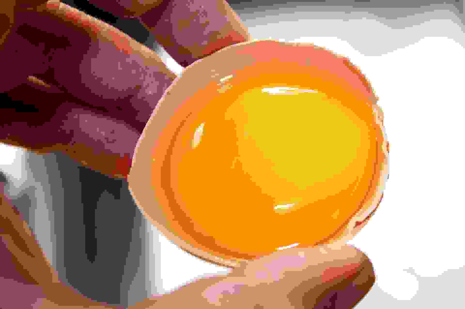 Lòng đỏ trứng giúp phát triển trí nhớ 1